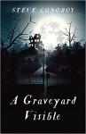 A Graveyard Visible by Steve Conoboy   www.angeleya.com #yalit #horror
