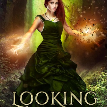 Blog Tour + Giveaway: Looking for Dei by David A. Willson