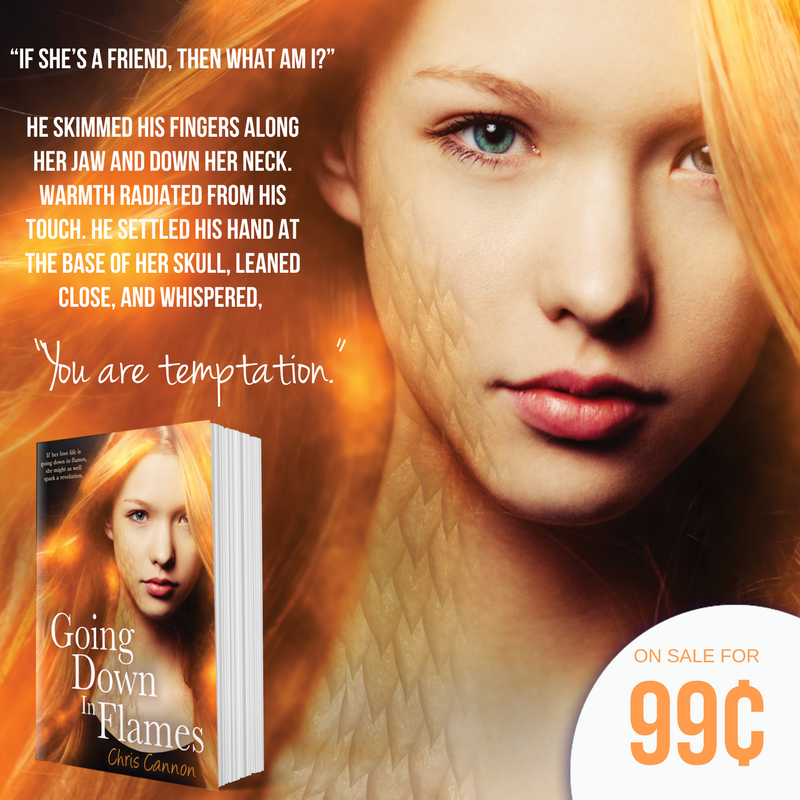 #99cent #booksale: Going Down in Flames by Chris Cannon | tour organized by YA Bound | www.angeleya.com