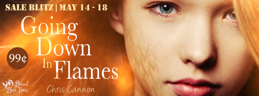 Book Blitz & #99centbook sale: Going Down in Flames by Chris Cannon | tour organized by YA Bound | www.angeleya.com