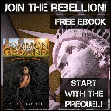 Blog Tour: Common Ground by @AliceRachelWrit